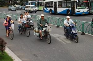 Bunt gemischt: Auf chinas Strasse kreucht und fleucht alles mögliche