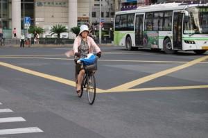 Nicht zu unterst in der Verkehrsnahrungskette - aber fast: Der Fahrradfahrer