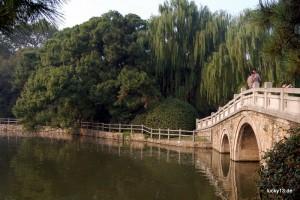"""Grüne Oase: Der """"Shanghai Zoo"""" ist vor allem auch eine der schönsten Grünanlagen dieser Mollochstadt"""