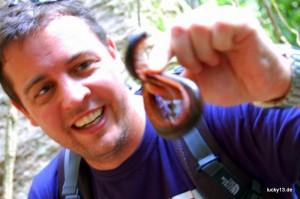 Fundstück im Jungle: Tausend Füsse und eine fiese, rote Abwehrflüssigkeit